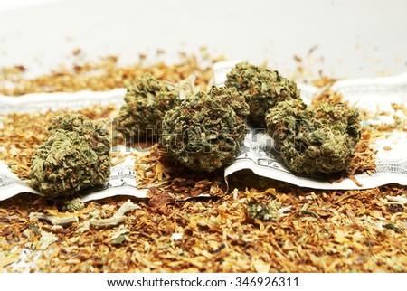 Legal Marijuana and Tobacco  - stock photo