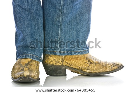Legs in Jeans and snakeskin Cowboys Boots - stock photo