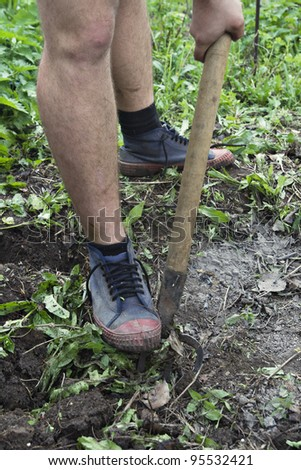 Legs of a man loosing the soil with a pitchfork