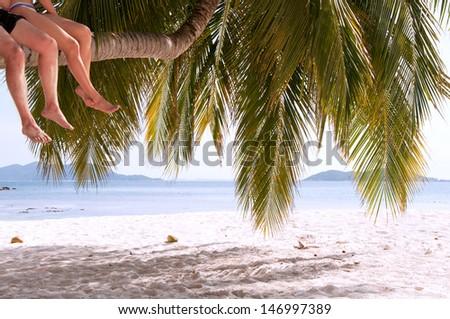 Legs of couple sitting on palm tree on a paradise island  - stock photo