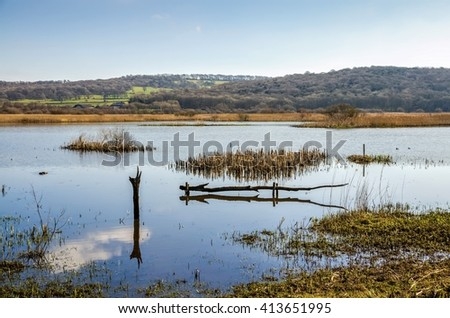Leighton Moss, Lancashire, England - stock photo