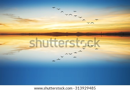 leisure in the lake - stock photo