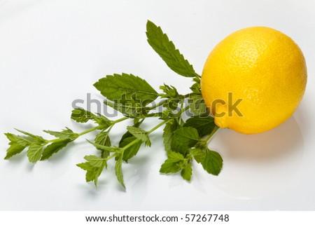 Lemon and lemon balm on a white plate - stock photo