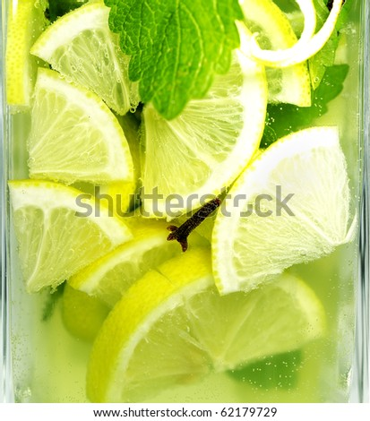 Lemon balm tea in a glass - stock photo