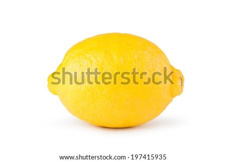 lemon fruit on a white background - stock photo