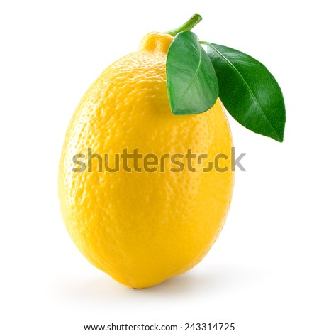 Lemon fruit with leaf isolated on white. - stock photo
