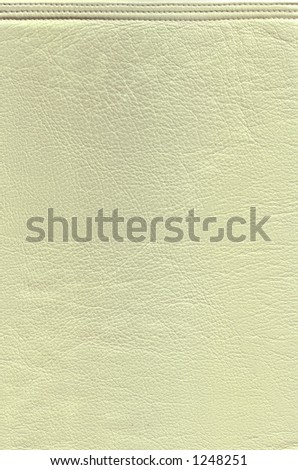 Lemon Leather Megapixel Texture