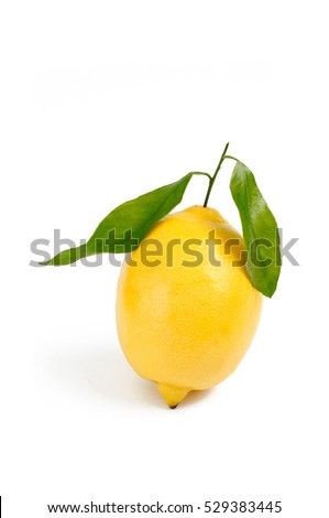 lemon on white backdrop