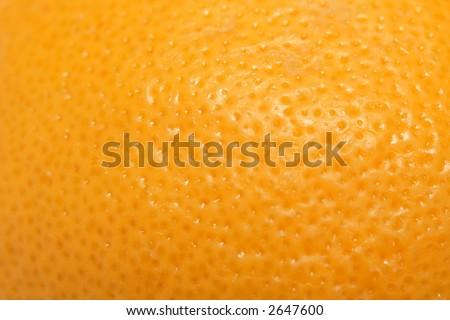 Lemon skin - stock photo
