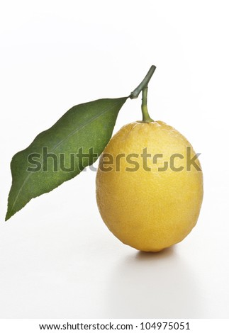 lemon with leaf on white background