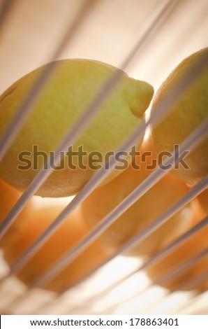 lemons in the fridge - stock photo