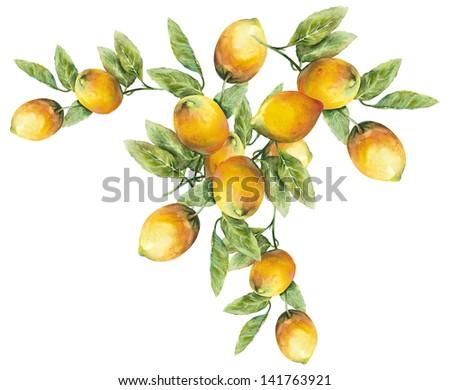 Lemons Pattern - stock photo