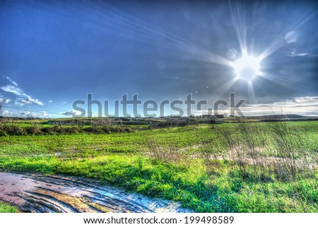lens flare on a country road - stock photo