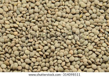 Lentil beans background - stock photo