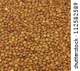 Lentil evenly layer background - stock photo