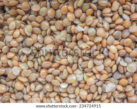 Lentil pulse nuts aka Lens culinaris useful as background