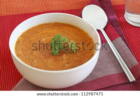 Lentil soup with parsley sprig in a white porcelain bowl - stock photo