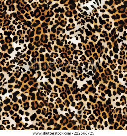 Leo, Animal swatch ~ seamless background - stock photo