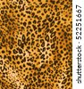 Leopard fabric - stock photo
