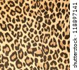 Leopard leather pattern texture closeup background. - stock photo