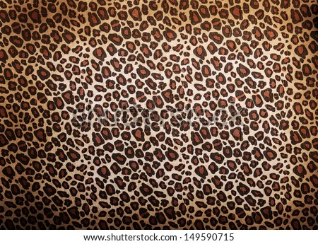 Leopard pattern background or texture close up - stock photo