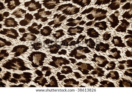 Leopard skin background - stock photo