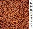 Leopard skin background or texture. Large resolution - stock photo