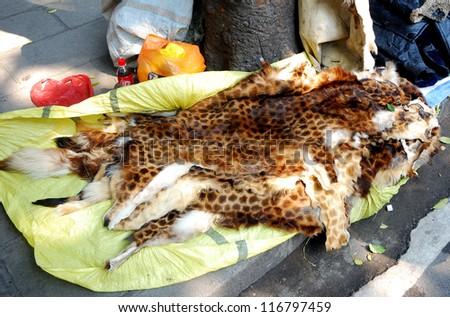 Leopard skin, Guangzhou, China - stock photo
