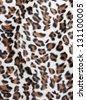Leopard skin Pattern texture - stock photo