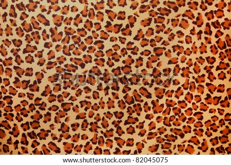 Leopard spots - stock photo