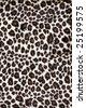 leopard texture (artificial) - stock photo