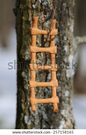 Lestvitsa, Russian rye festive spring cookie on tree branch  - stock photo