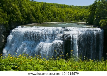 Letchworth's middle falls and wildflowers - stock photo
