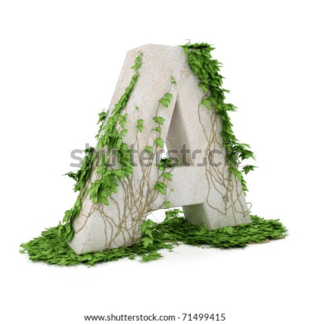 Letter A threads covered with ivy isolated on white background. - stock photo