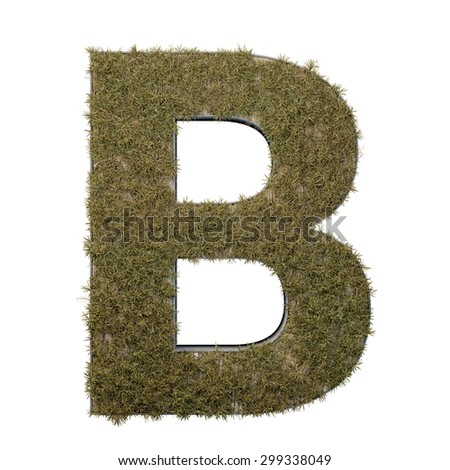 Letter B made of dead grass, growing on wood with metal frame - stock photo