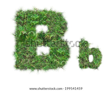 letter B on green grass isolated on over white background