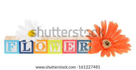 Letter blocks spelling flower. Isolated on white. - stock photo