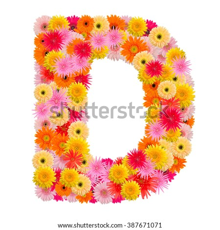 Letter D alphabet with gerbera  isolated on white background   - stock photo
