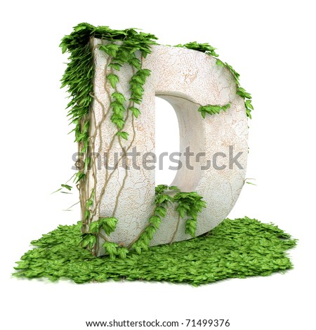 Letter D threads covered with ivy isolated on white background. - stock photo
