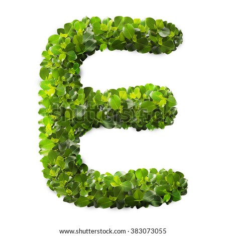 Letter E made of green leaves isolated on white
