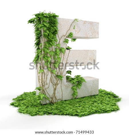Letter E threads covered with ivy isolated on white background. - stock photo