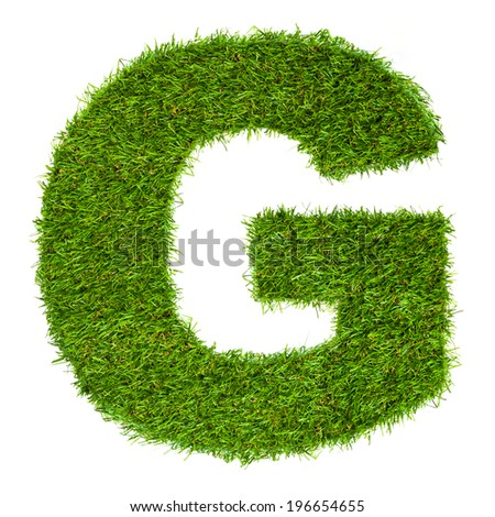 Letter G made of green grass isolated on white - stock photo
