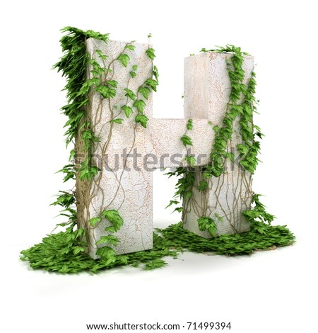 Letter H threads covered with ivy isolated on white background. - stock photo