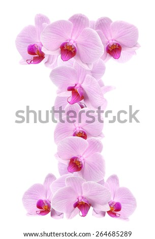 letter I from orchid flowers. isolated on white