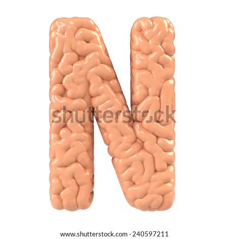 Letter N. Brain alphabet isolated on white background.Brain font.  - stock photo