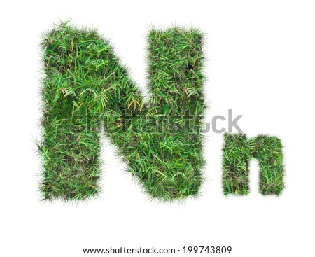 letter N on green grass isolated on over white background