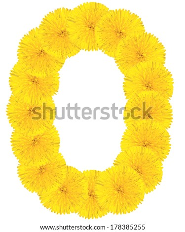 Letter O made from dandelion flowers isolated on white background - stock photo