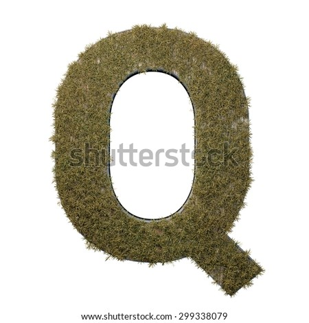 Letter Q made of dead grass, growing on wood with metal frame - stock photo