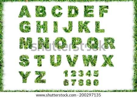 letter resolution conceptual set or collection green grass isolated on over white background