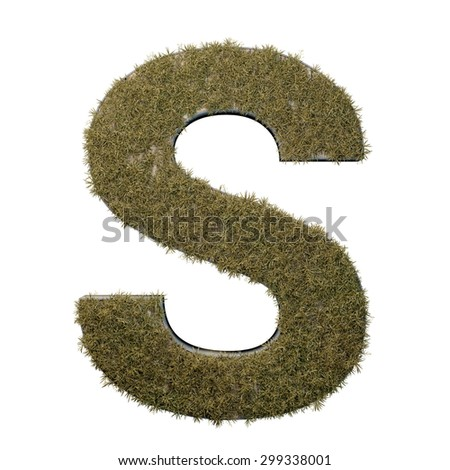 Letter S made of dead grass, growing on wood with metal frame - stock photo
